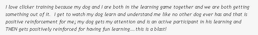 clicker_training_quote